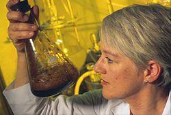 Vad är biobränsle 2
